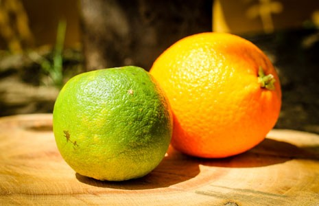 Difference Between Curaçao, Triple Sec & Orange Liqueur Explained